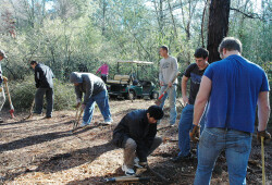 day-of-service-20